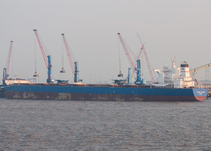 Anangel Seafarer pictured at Immingham on 20th July 2014