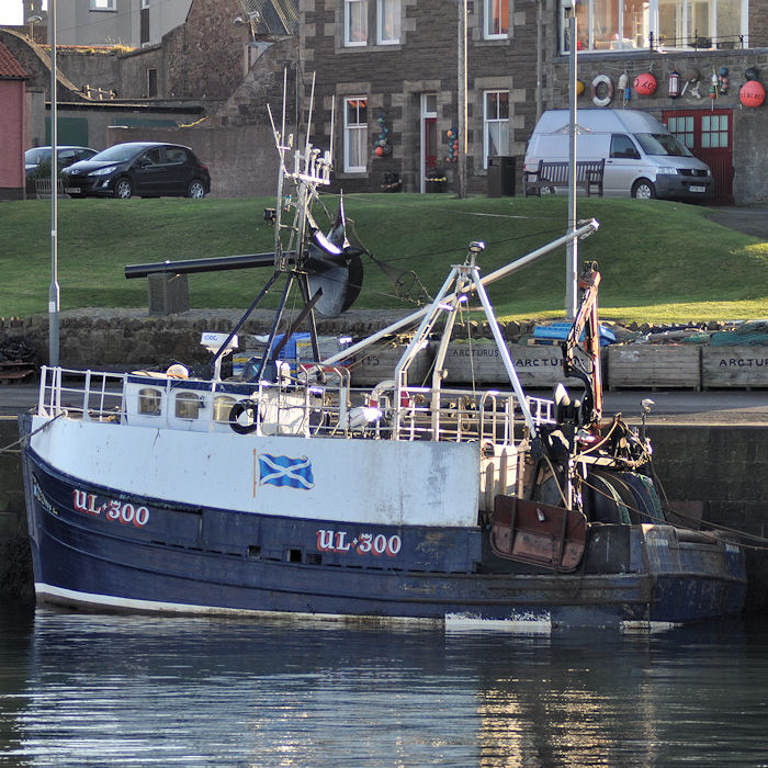 Arcturus pictured at Dunbar on 6th November 2011