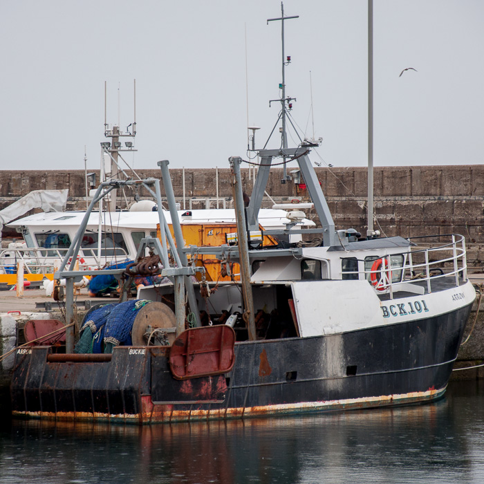 Arrow pictured at Buckie on 5th May 2014