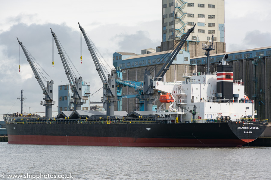 Atlantic Laurel pictured in Royal Seaforth Dock, Liverpool on 20th June 2015
