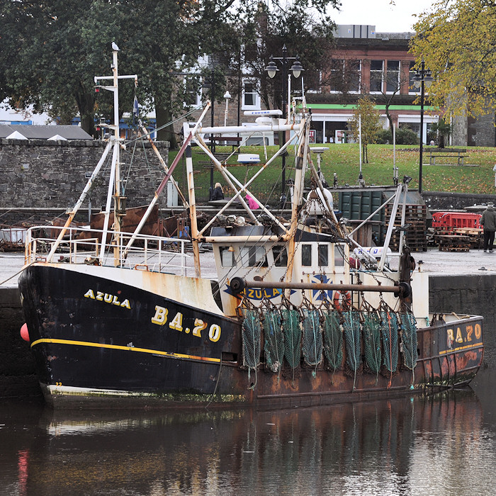 Azula pictured at Kirkcudbright on 19th October 2012