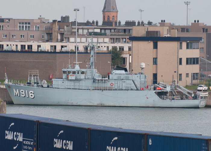 Bellis pictured at Zeebrugge on 19th July 2014