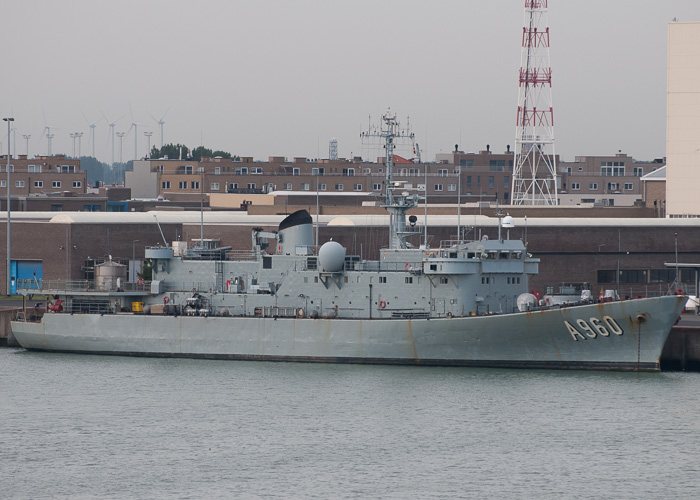 Godetia pictured at Zeebrugge on 19th July 2014