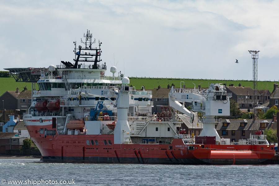 Harkand da Vinci pictured at Montrose on 17th May 2015