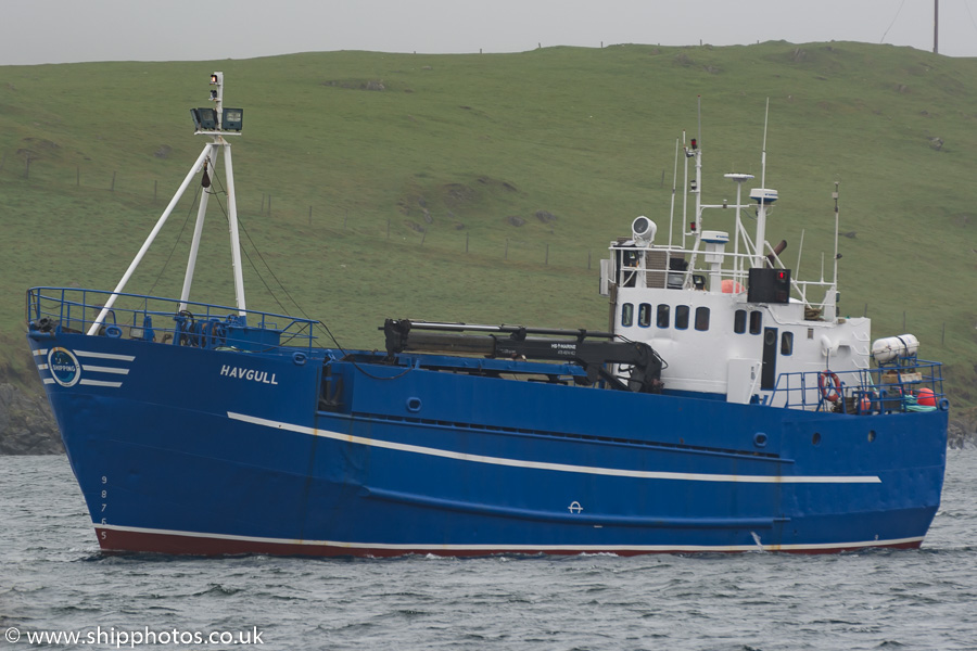 Havgull pictured at Scalloway on 21st May 2015