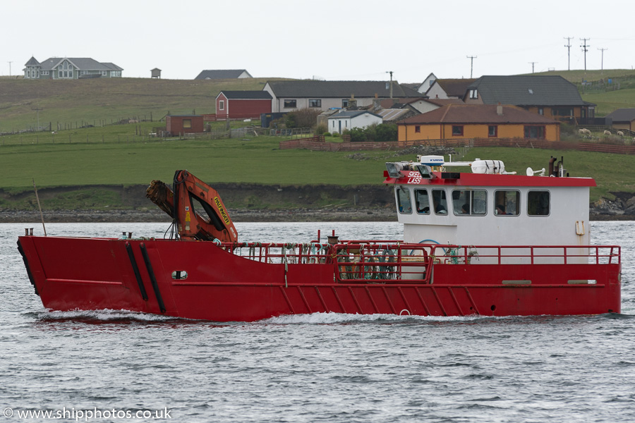 Skelda Lass pictured arriving at Scalloway on 20th May 2015