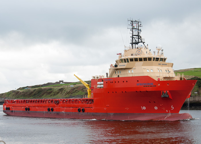 Springbok pictured arriving at Aberdeen on 13th October 2014
